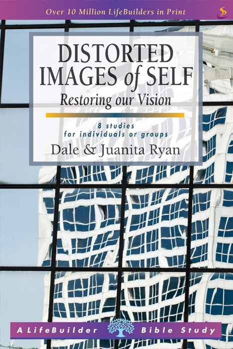 Lifebuilder: Distorted Images Of Self - Restoring our Vision (Paperback)