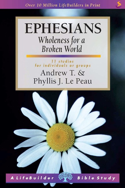 Lifebuilder: Ephesians - Wholeness for a broken world