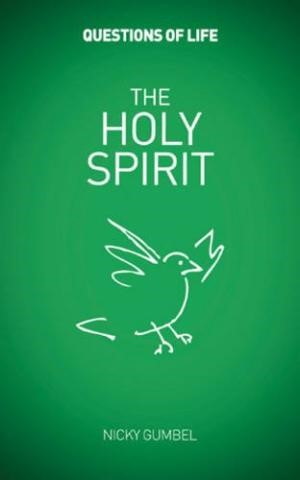 Questions of Life: The Holy Spirit (Paperback)