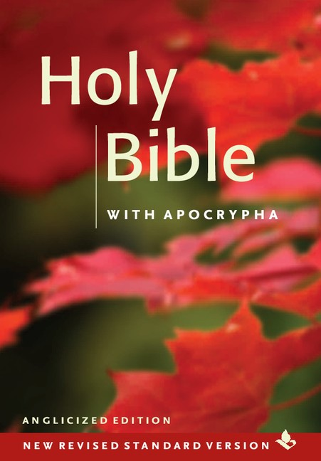 NRSV Popular Text Bible With Apocrypha (Pack Of 20) (Hard Cover)