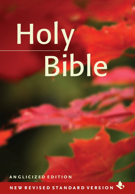 NRSV Popular Text Bible (Pack Of 20) (Hard Cover)