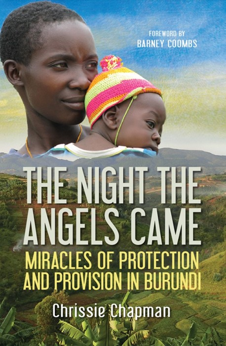 The Night the Angels Came (Paperback)
