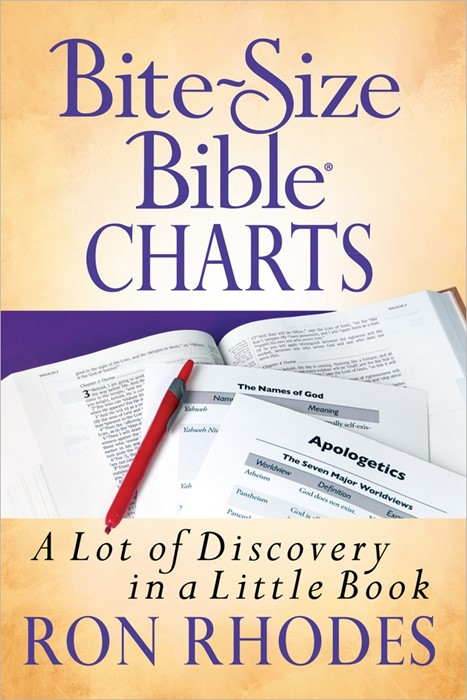 Bite Size Bible Charts (Paperback)