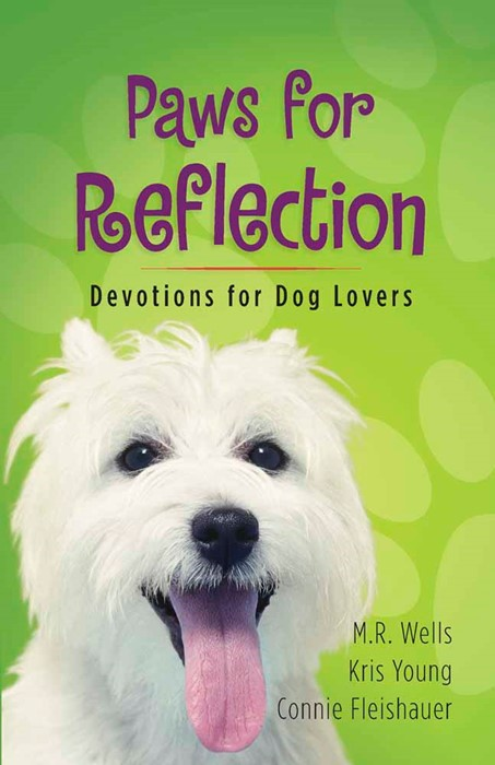 Paws For Reflection (Paperback)