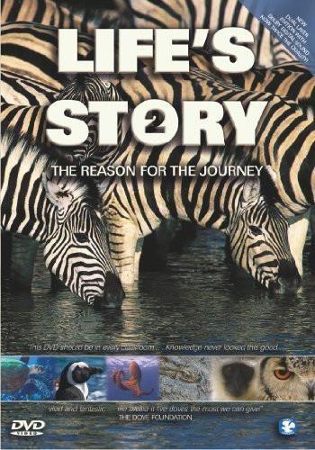 Life's Story 2 DVD (DVD)