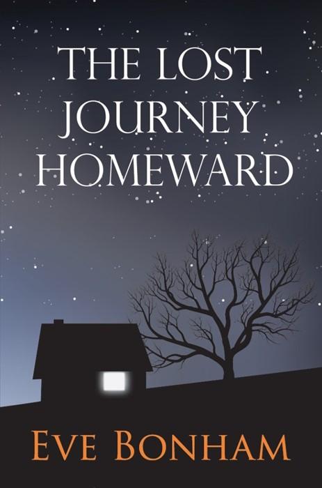 The Lost Journey Homeward (Paperback)