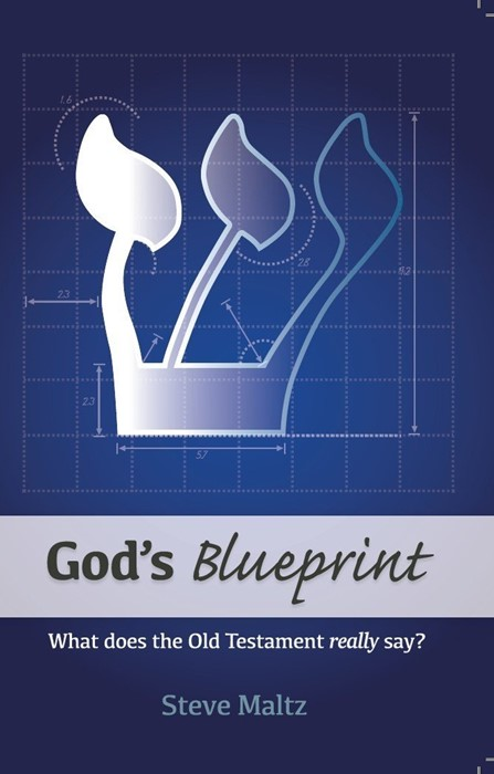 God's Blueprint (Paperback)