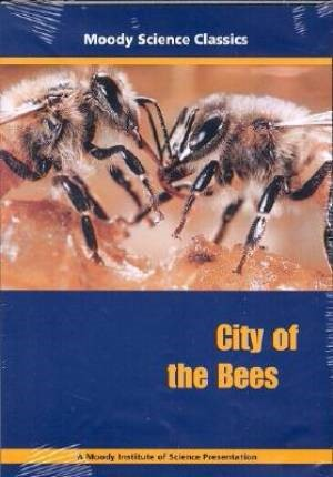 City of the Bees (DVD)