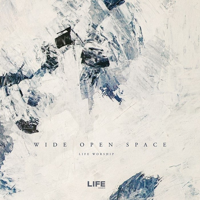 Wide Open Space (Live) (CD-Audio)
