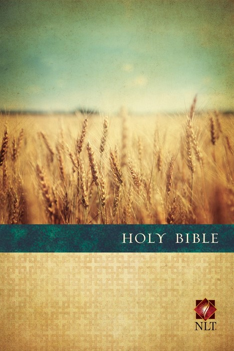 NLT Premium Value Slimline Large Print Bible: PB (Paperback)