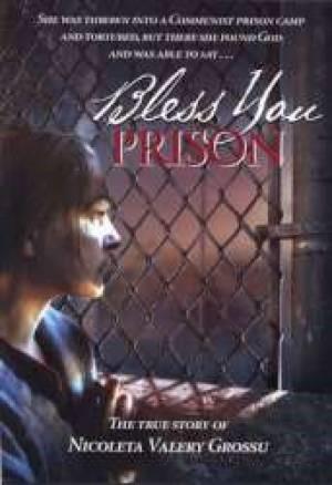 Bless You Prison DVD (DVD Video)