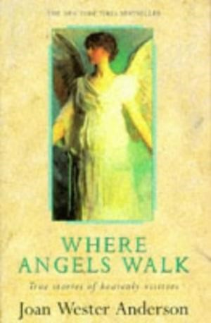 Where Angels Walk (Paperback)