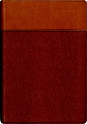 NIV Thinline Bible Tan (Hard Cover)
