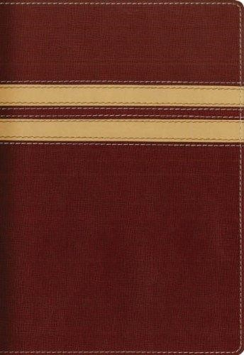 NIV Compact Thinline Bible Burgundy/Cream