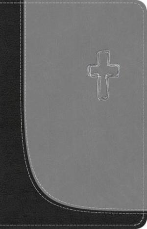 TNIV Popular Bible with Concordance Black/Grey
