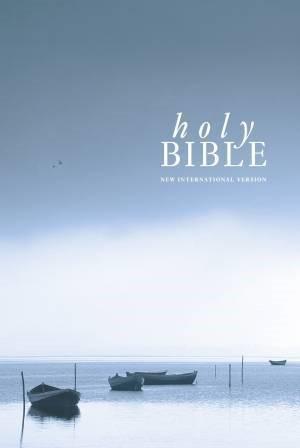 NIV Popular Economy Bible (Hard Cover)