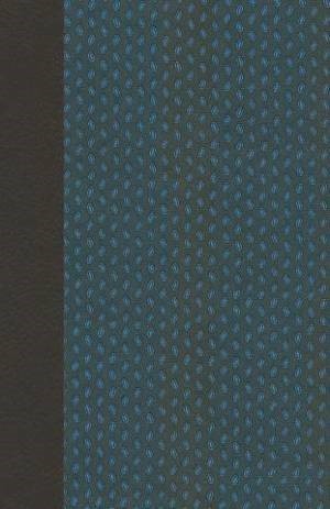 NIV Pocket Bible Blue