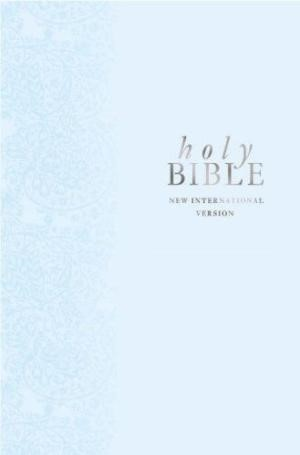 NIV Pocket Gift Bible Blue
