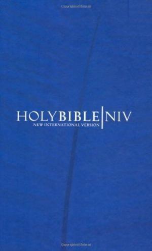 NIV Popular Economy Bible Blue (Hard Cover)