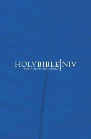 NIV Popular Economy Bible Blue Pack of 20 (Hard Cover)