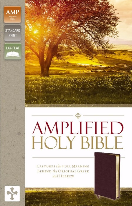 Amplified Holy Bible, Burgundy (Bonded Leather)