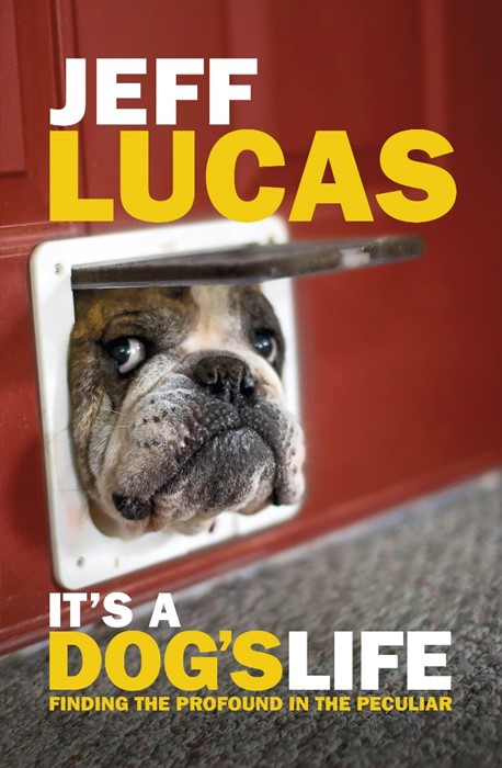 It's A Dog's Life (Paperback)