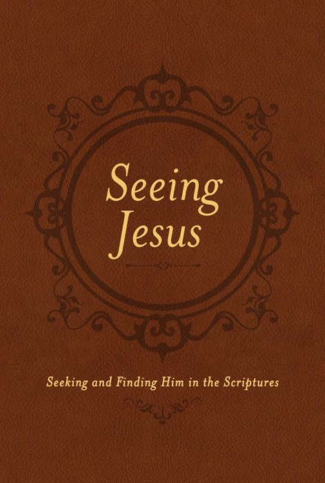 Seeing Jesus (Imitation Leather)