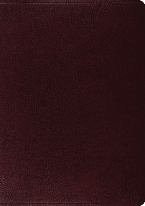 ESV Study Bible, Burgundy Bonded Leather (Bonded Leather)