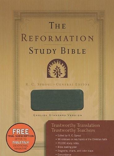 ESV Reformation Study Bible Grey (Imitation Leather)