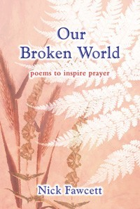 Our Broken World (Hard Cover)