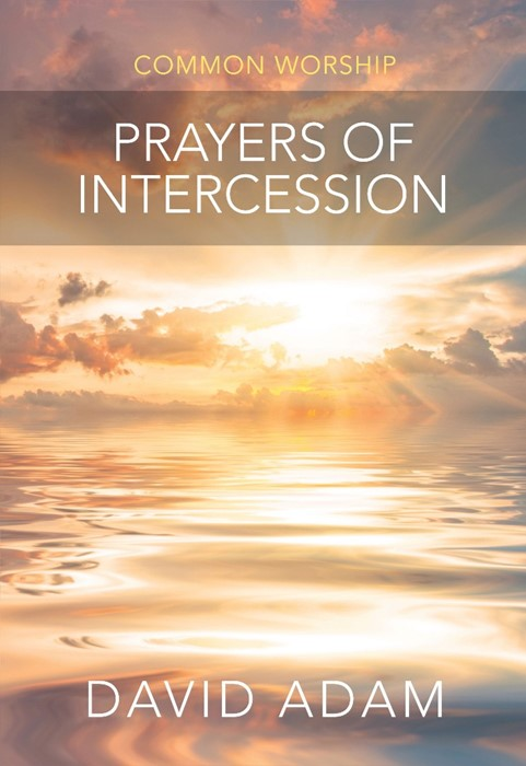 Prayers Of Intercession (Paperback)