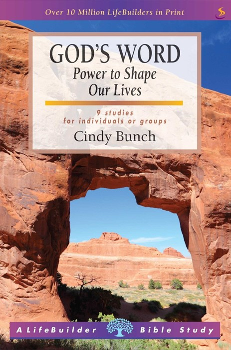 Lifebuilder: God's Word - Power to Shape our lives (Paperback)