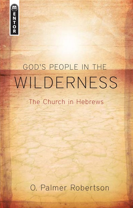 God's People In The Wilderness (Paper Back)