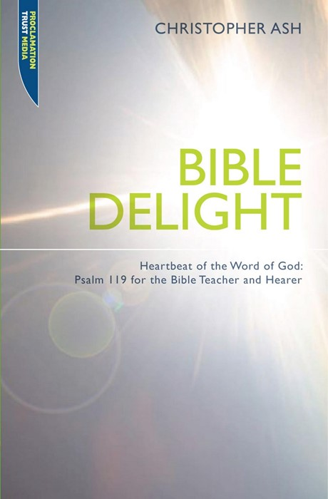 Bible Delight (Paperback)