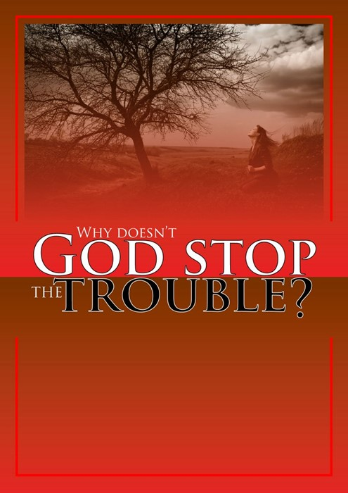 Why Doesn't God Stop the Trouble? (Paperback)