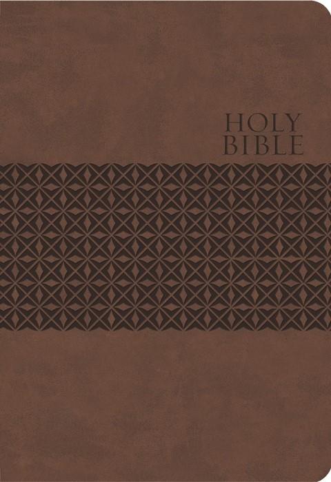 KJV Study Bible (Imitation Leather)