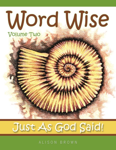 Word Wise Volume 2 (Paperback)