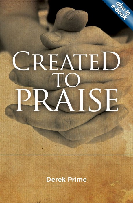 Created To Praise (Paper Back)