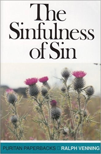 The Sinfulness of Sin (Paperback)