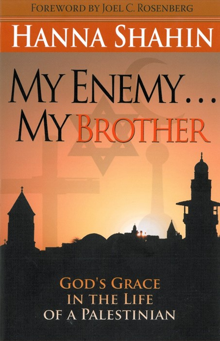 My Enemy My Brother (Paperback)