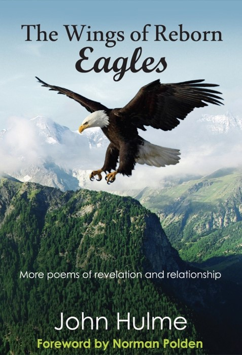 The Wings Of Reborn Eagles (Paperback)
