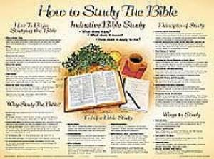 How To Study The Bible (Laminated)   20x26 (Wall Chart)