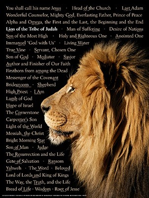 Lion of Judah Laminated Wall Chart (Wall Chart)