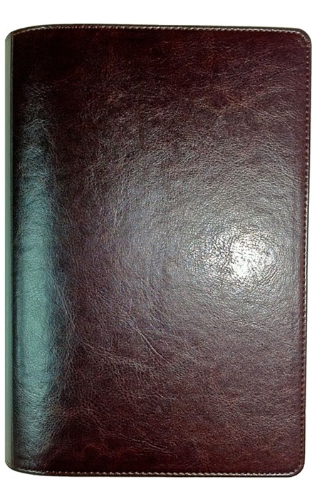 NLT Waterproof Bible Brown (Imitation Leather)
