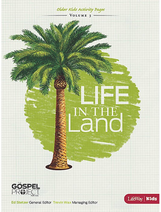 Life in the Land Older Kids Activity Pages (Paperback)