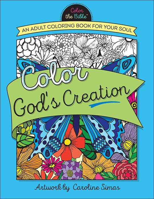Color God's Creation (Paperback)