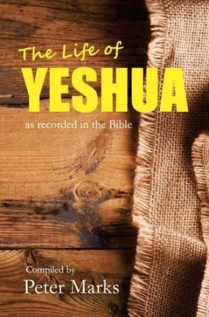 The Life of Yeshua (Paperback)