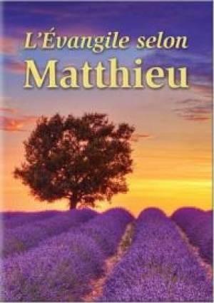 Gospel according to Matthew in French