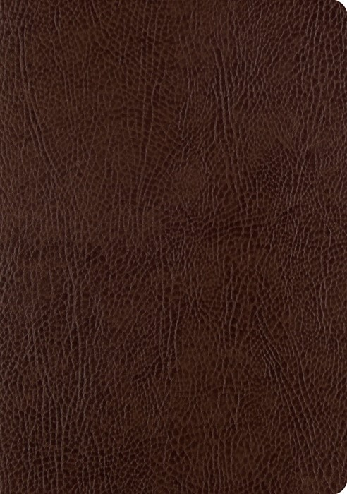 ESV Single Column Journaling Bible, Large Print (Bonded Leather)