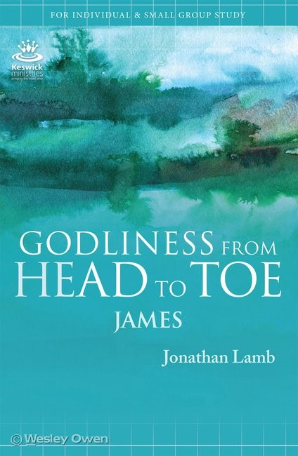 Godliness From Head to Toe (Paperback)